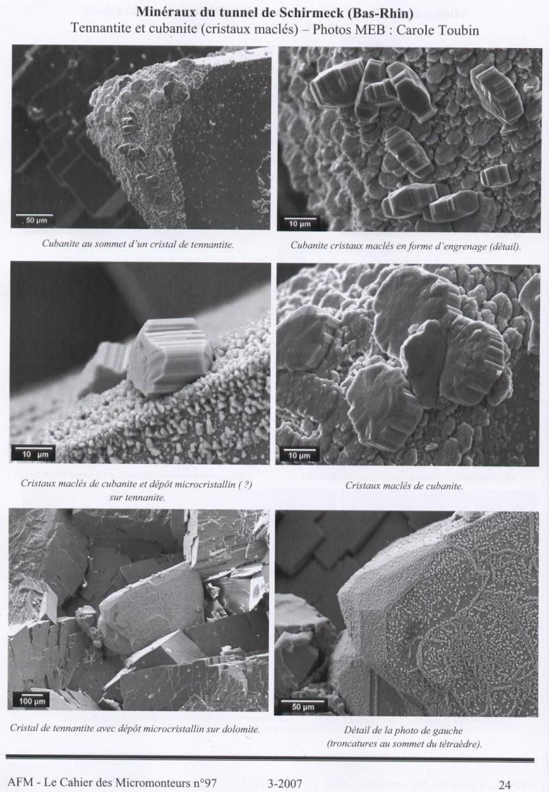 Diatomée de Roscoff Micro-10