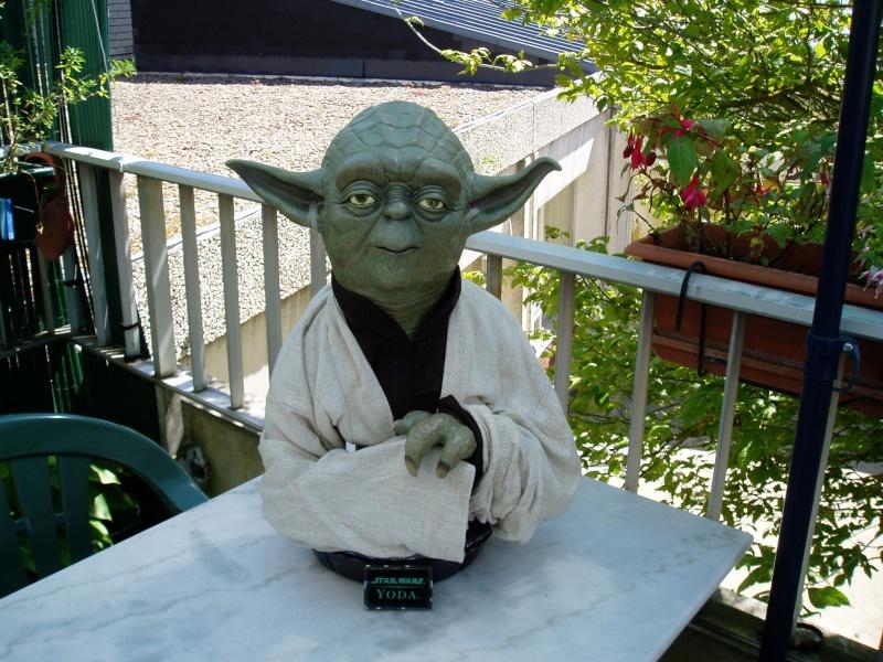 Yoda Life-Size Bust P1010010