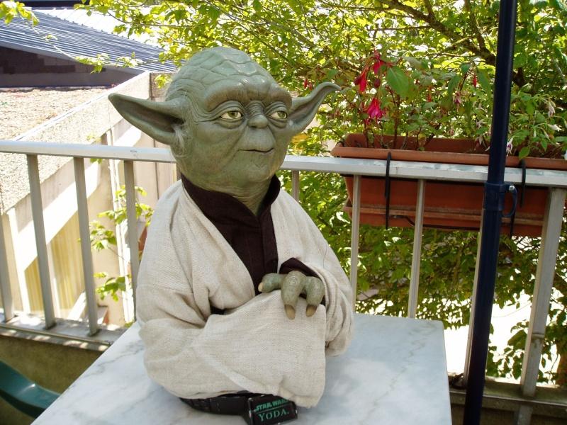 Yoda Life-Size Bust P1010011