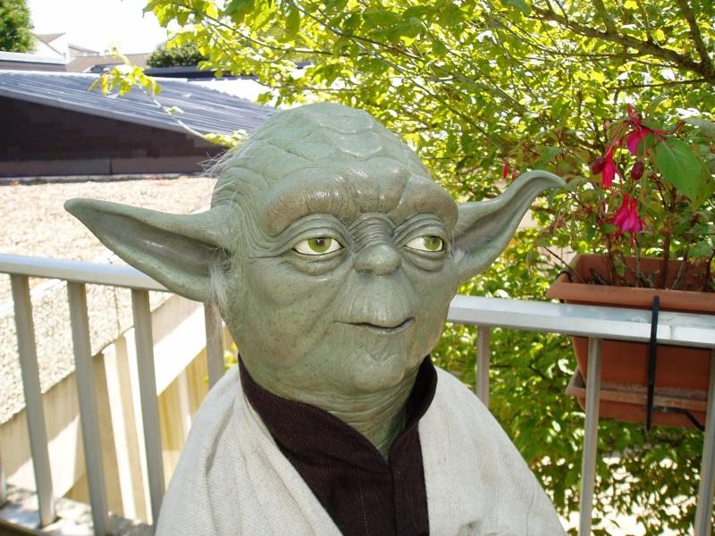 Yoda Life-Size Bust P1010013
