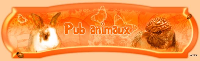 Pub animaux Bannie13
