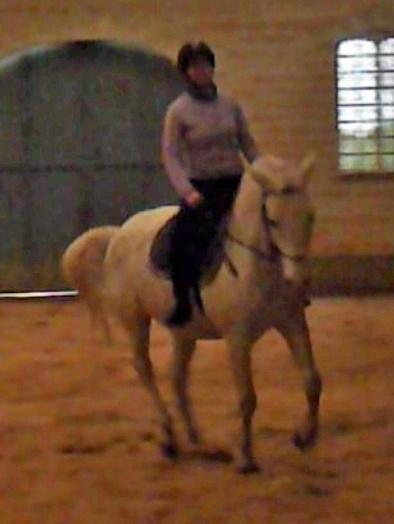 mauvaise position à cheval Gerico12
