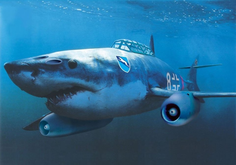 Jet Shark ... 11062210