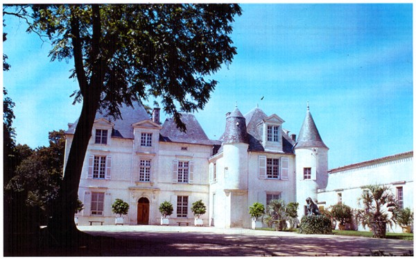 Le vignoble du Pessac Leognan Chatea10
