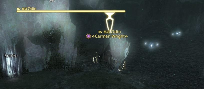 Instant insolite in game Odin_c10