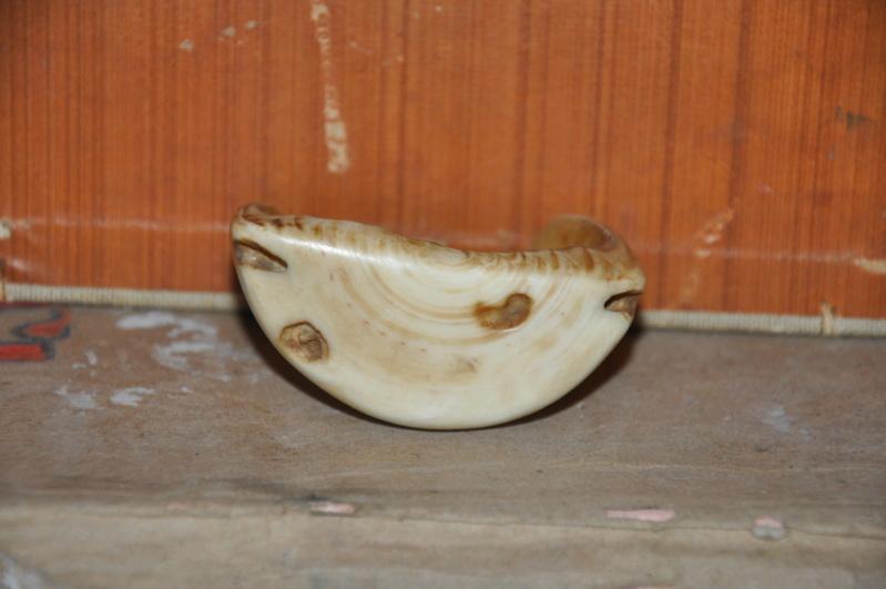 Sans doute une molaire d'hippopotame travaillée.  Dsc_0470