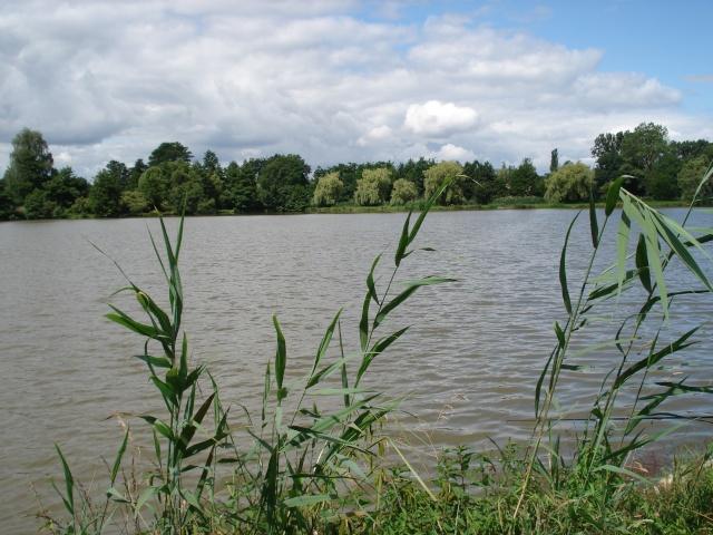 beau paysage.....et pas de prises sniff Dsc00410