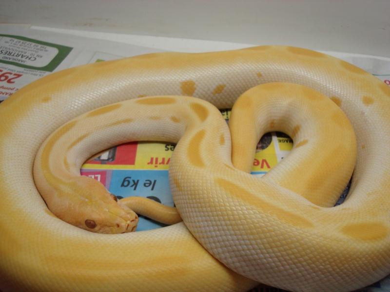 python 2007_122