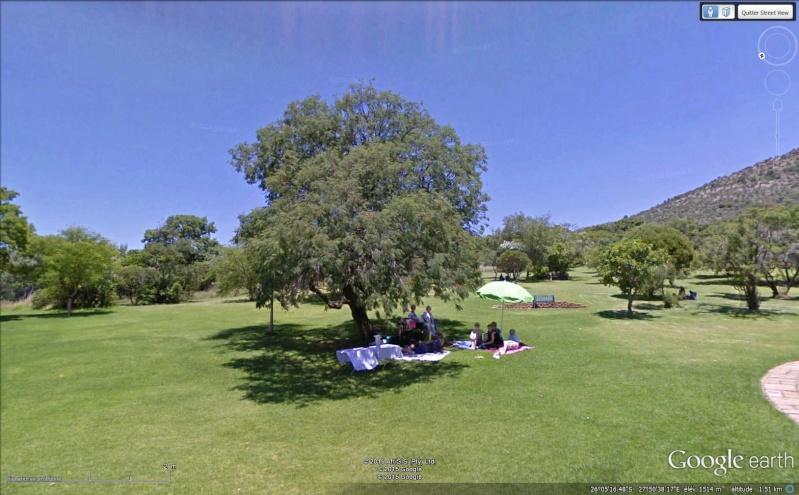 Walter Sisulu National Botanical Garden, Roodepoort - Afrique du Sud Sans_t44