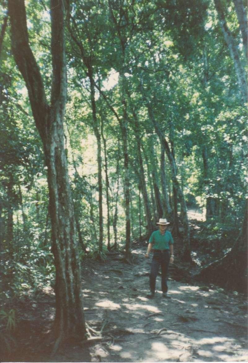 De Yavin IV à Tikal (Star Wars 4 : A New Hope et Rogue One) 1985-t14