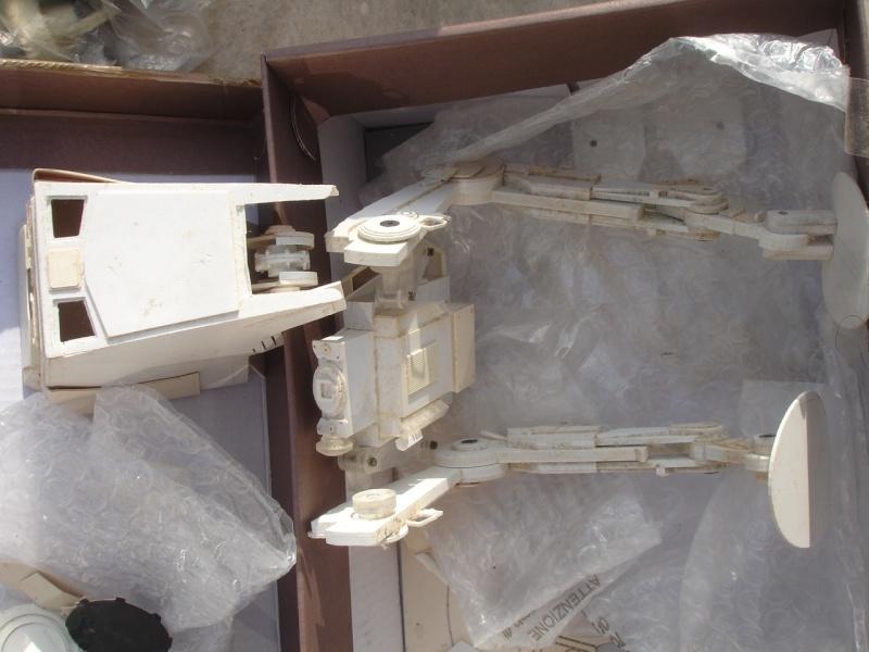 Sujets à venir du Youli wood pecker Dsc00410