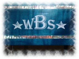 Ma nouvelle Steel Wbs12