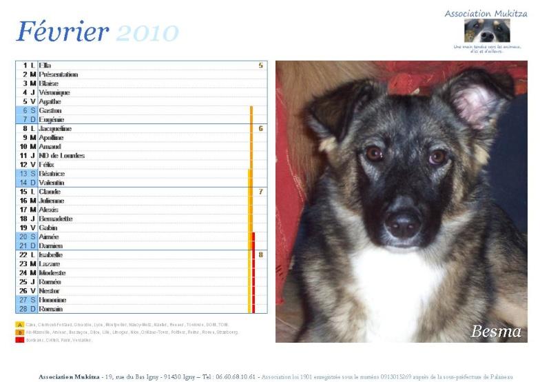 Calendrier 2010 Diapos28
