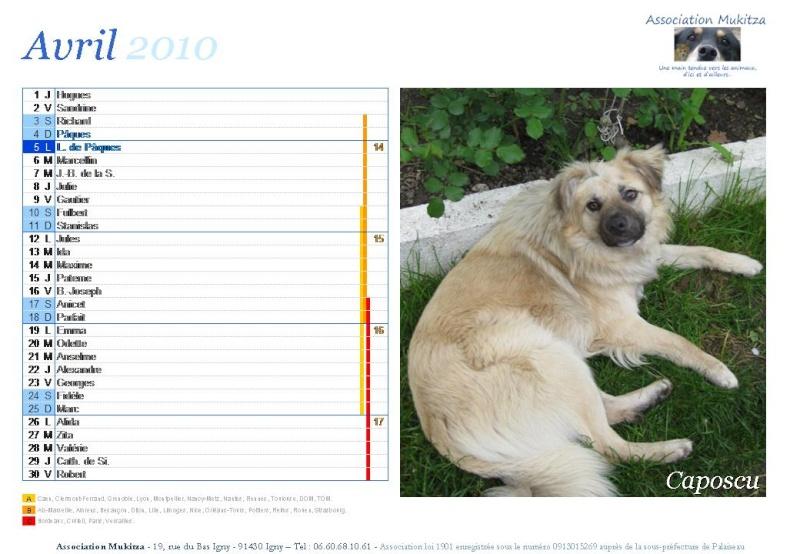 Calendrier 2010 Diapos30