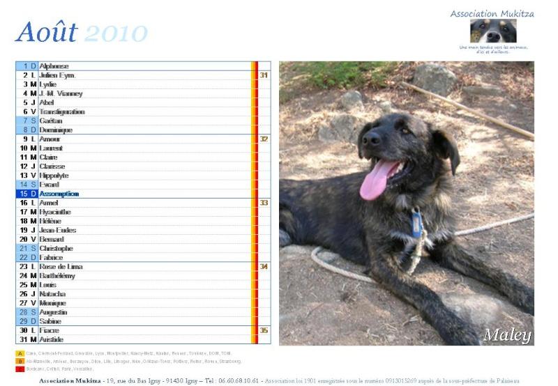 Calendrier 2010 Diapos34