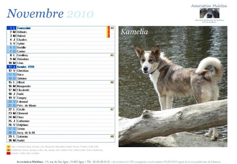 Calendrier 2010 Diapos37