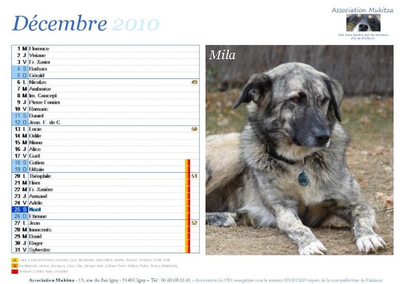 Calendrier 2010 Diapos38