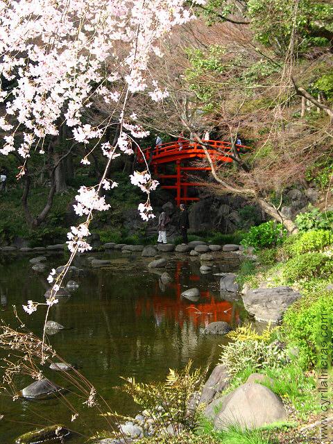 Paysages Japonais Img_0810