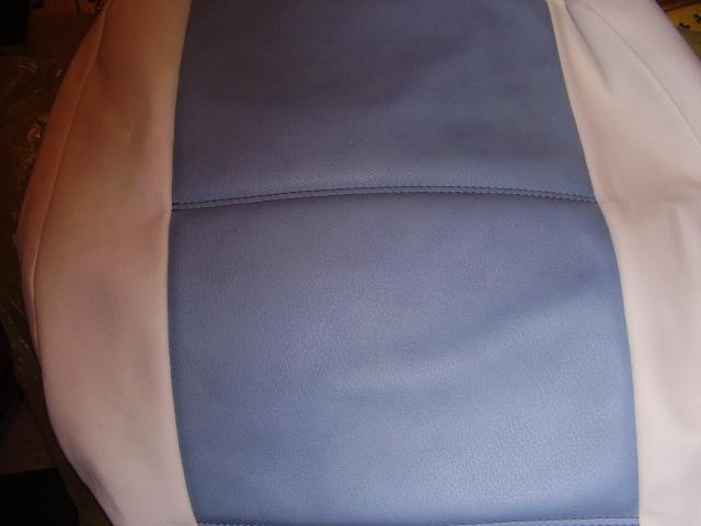vends housse en sky  tuning bleu et blanche pour 306 Pa100011