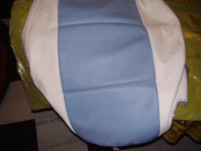 vends housse en sky  tuning bleu et blanche pour 306 Pa100013