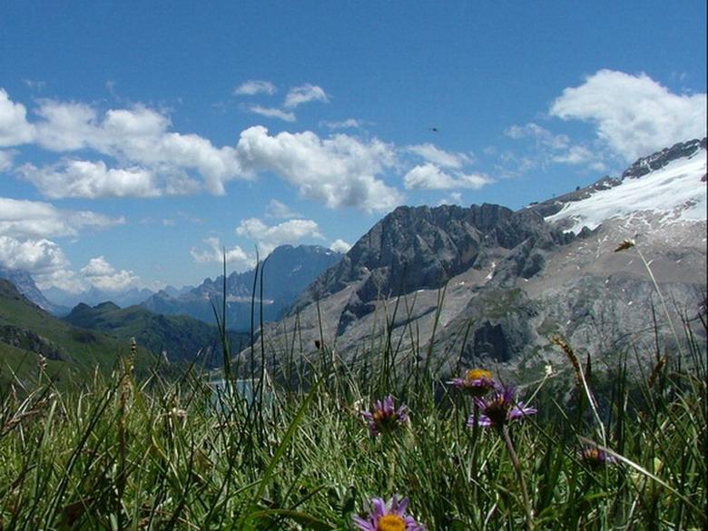 [Italie] Randos botaniques dans Dolomites (suite 2) Dscf6510