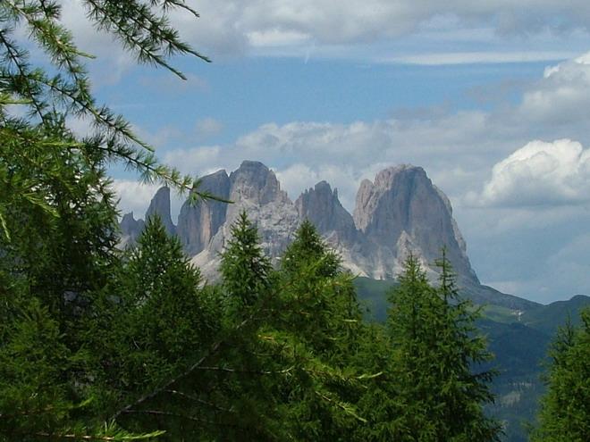 [Italie] Randos botaniques dans les Dolomites(suite et fin) Dscf6610