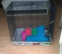Vends cage freddy max 2 montpellier Imag0810