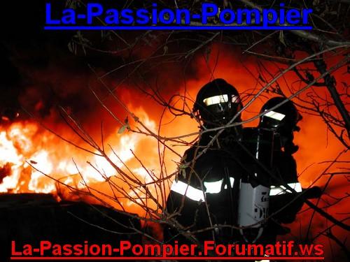 Photos du Forum Fond_e15