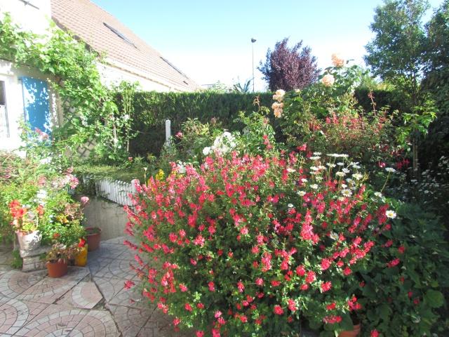Mon jardin et ses fleurs 2015 110