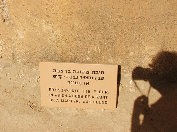 ISRAEL DU NORD AU SUD SUIVEZ-MOI Dscf2327