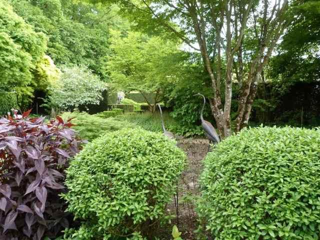 Le Jardin de Castillon P1150011