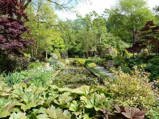 Le Jardin de Castillon P1150015