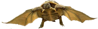 tortue10.png