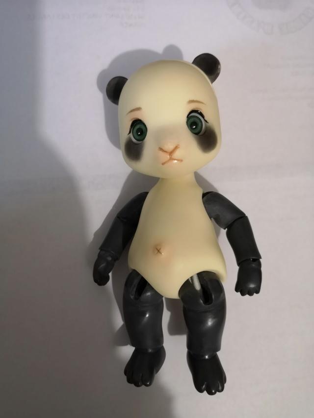 [Vente]Chat Baha Pipos caramel/Panda Asleep Eidolon Img_2056
