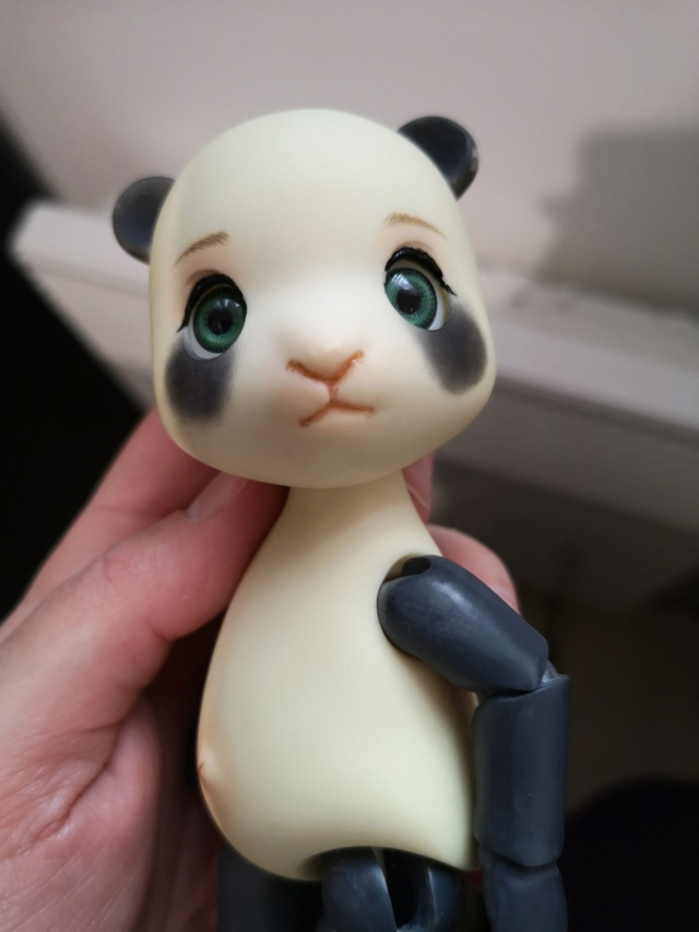 [Vente]Chat Baha Pipos caramel/Panda Asleep Eidolon Img_2059
