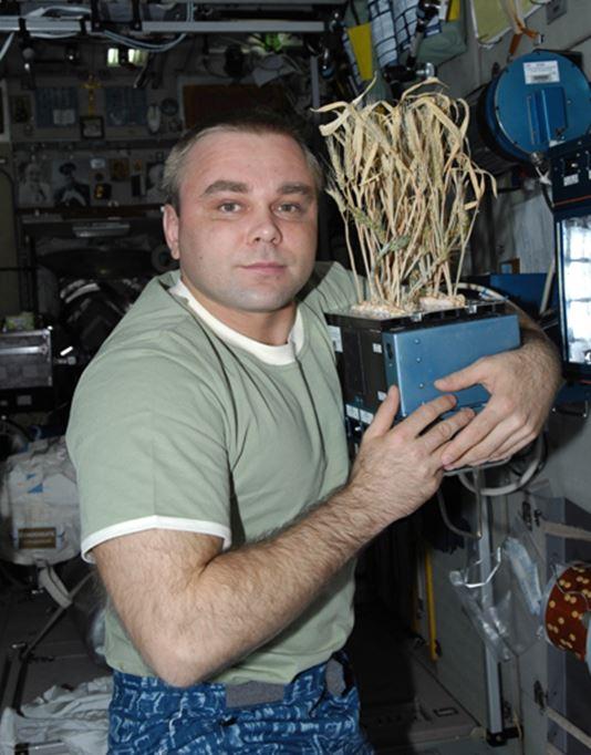 [ISS] Les astronautes vont manger leur 1ère salade cultivée dans l'espace Aaa520