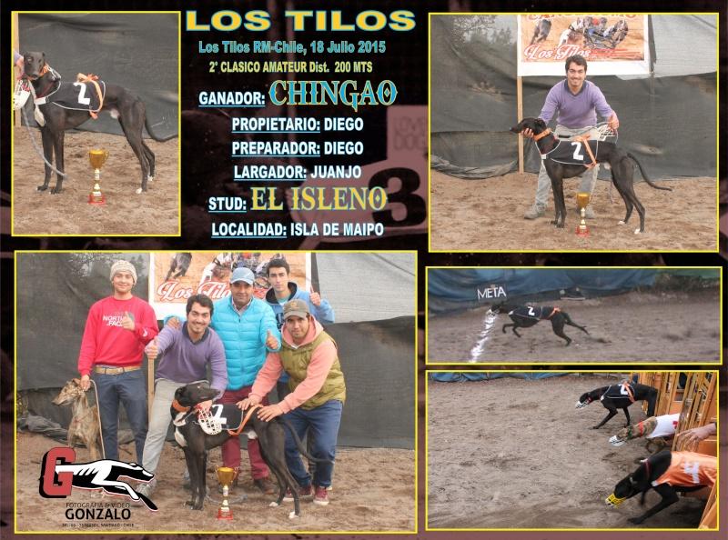 SABADO 18 JULIO 2015, CLASICOS Y DESAFIOS EN CANODROMO LOS TILOS. CALERA DE TANGO 2-clas12