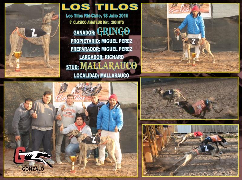 SABADO 18 JULIO 2015, CLASICOS Y DESAFIOS EN CANODROMO LOS TILOS. CALERA DE TANGO 6-clas12