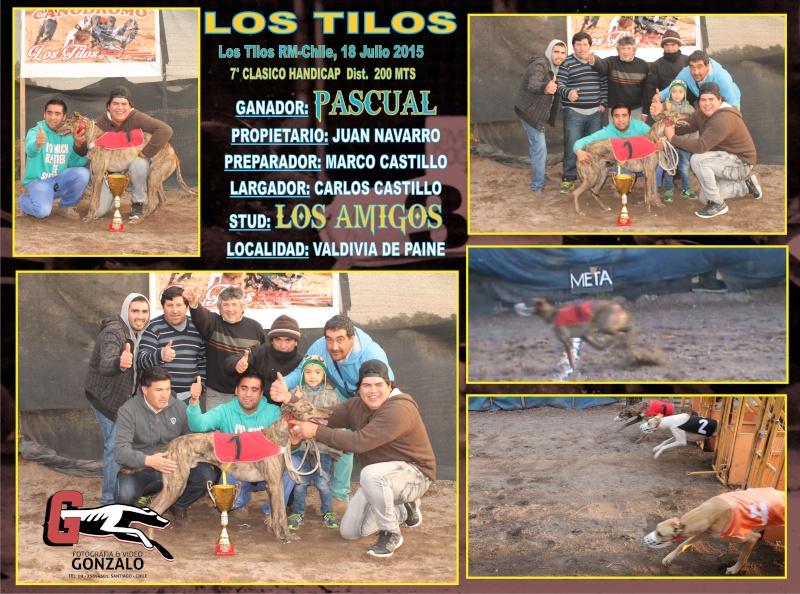 SABADO 18 JULIO 2015, CLASICOS Y DESAFIOS EN CANODROMO LOS TILOS. CALERA DE TANGO 7-clas12