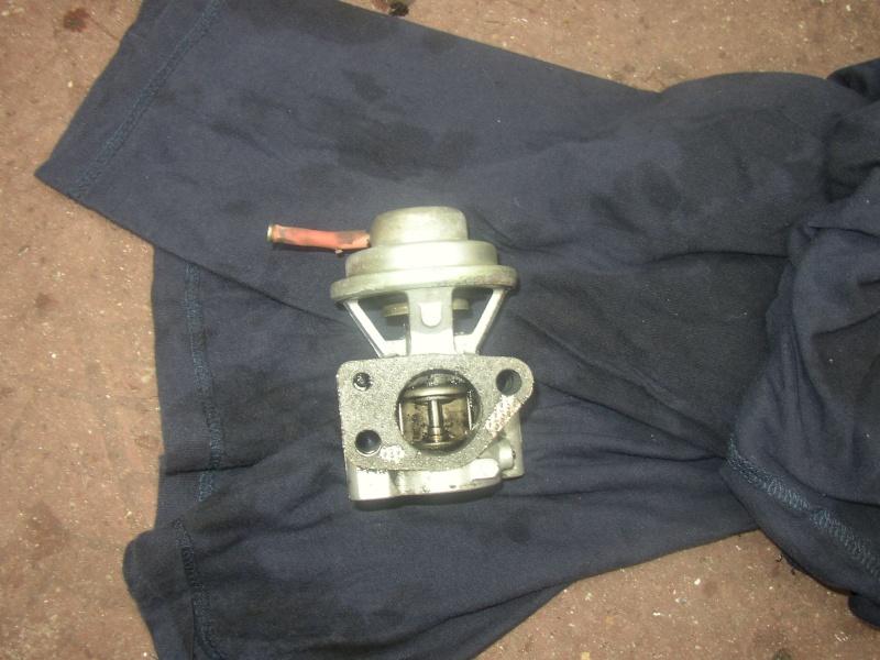 nettoyage valve EGR bravo td 75 Photo_16