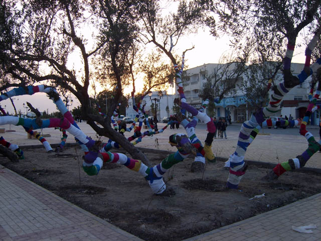 زيتونات القيروان 2008 (isamk) Farhan10