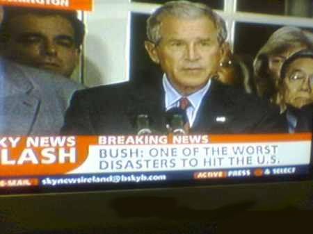 George Bush copycat  Jacob Zuma Bush-d10