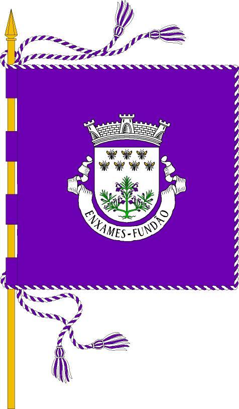 Brasão e Bandeira Enxame11