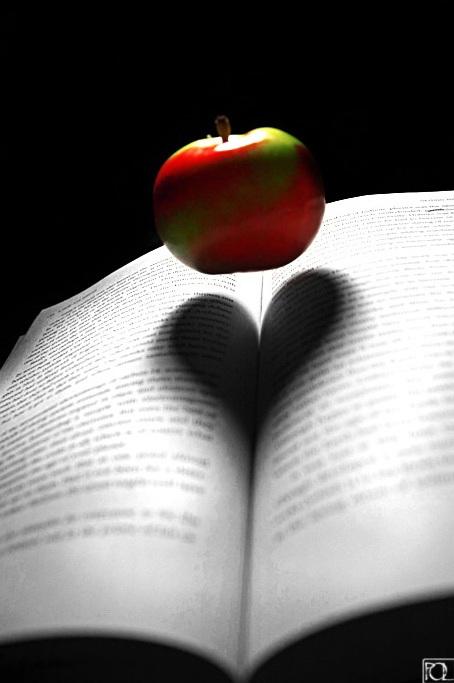 تأثير الضوء على الكتب ... صور رومانسية ... روعة Wh_46310
