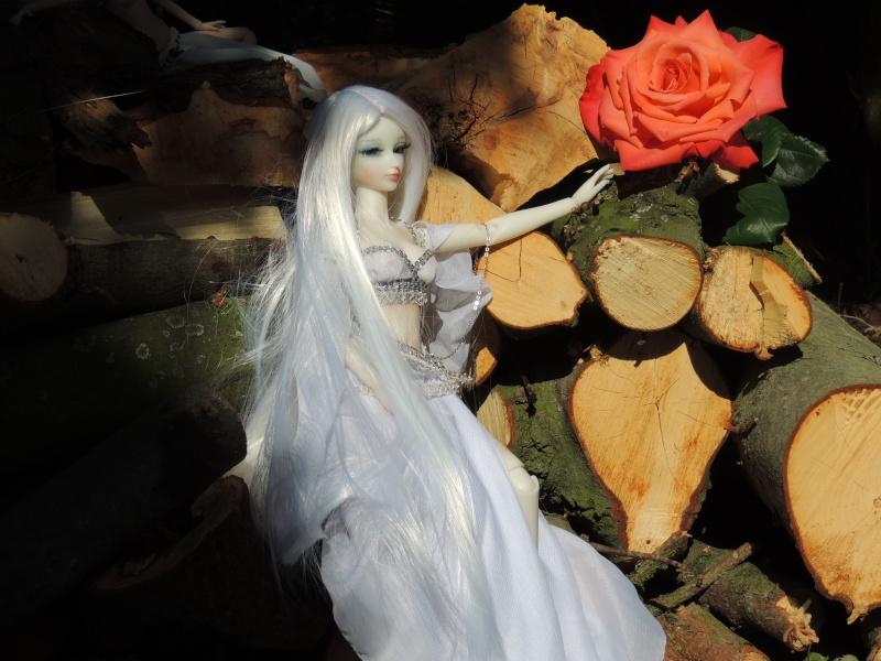 Crystal de Island Doll Dscn5014