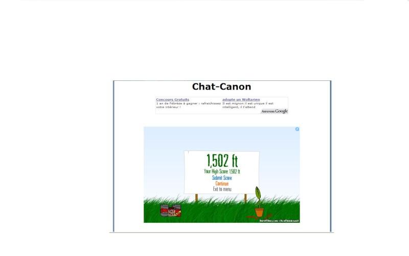 Chat Canon Sans_t10