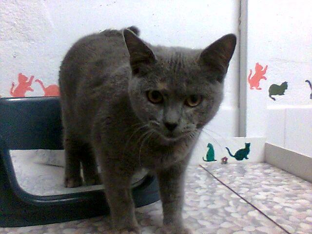 mes photos du CLC Cat1510