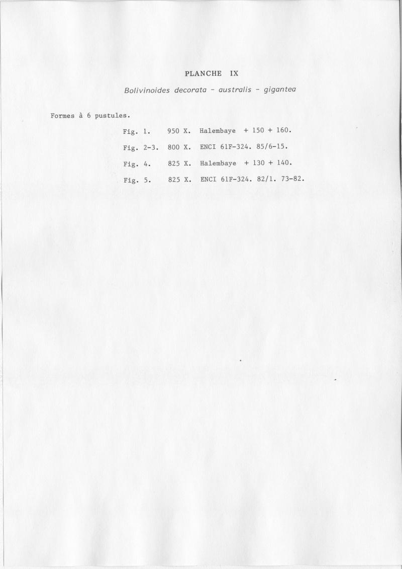 Extraction des microfossiles dans de la craie. Memoir26