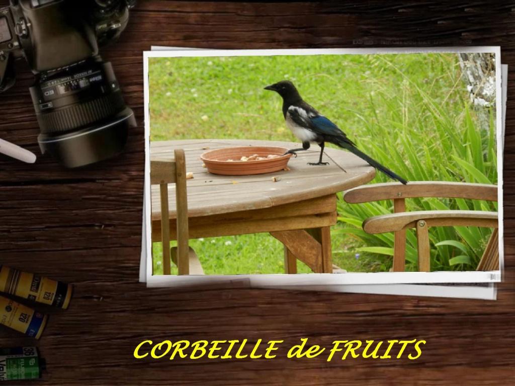 NOTRE CORBEILLE DE FRUITS