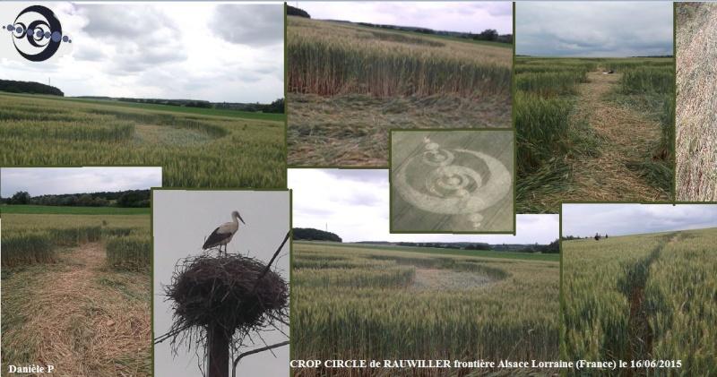 LES CROP CIRCLES............... QUELLE AVENTURE !!! Crop_c11
